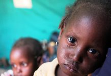 refugies nigerians