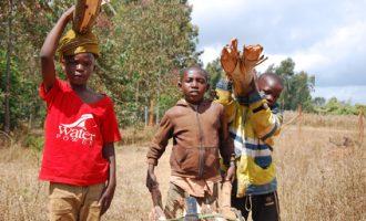 Jeunes enfants en Tanzanie